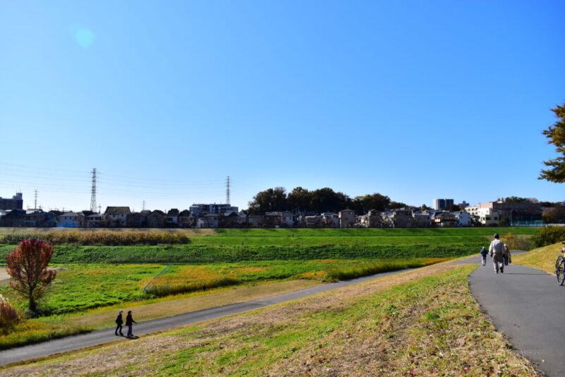 上谷沼調節池の景色