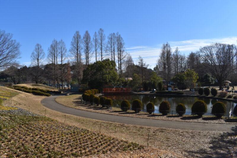 大崎公園の景色
