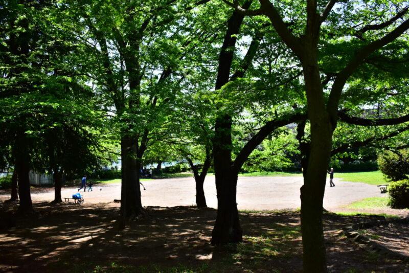 八王子公園園内