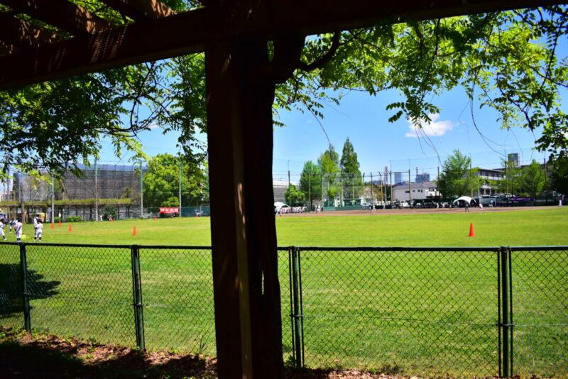 八王子公園野球場