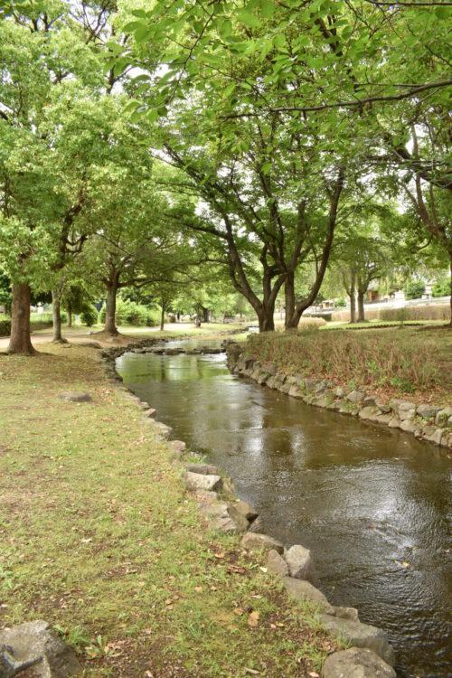 東大宮親水公園