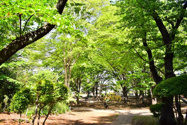 与野公園の園内