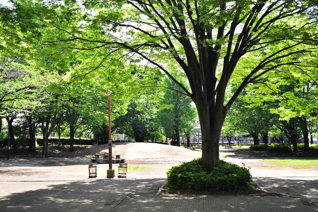 与野公園の南側