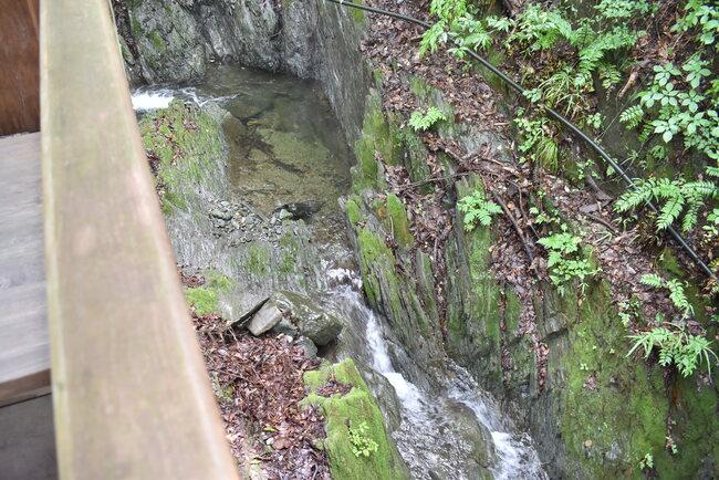 刈米マスつり場脇の川