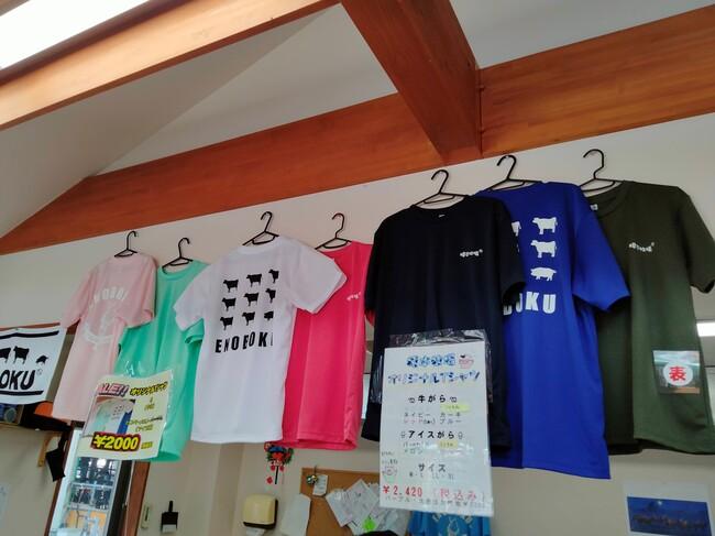 榎本牧場Tシャツ