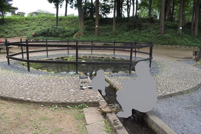 ホタルの里(池)