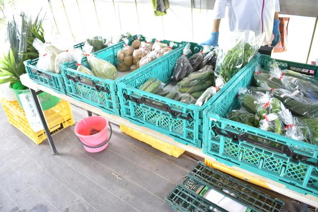 ブルーベリープラザ浦和野菜販売も