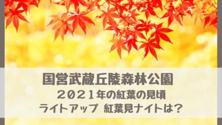 """国営武蔵丘陵森林公園 2021年の紅葉の見頃はいつ?ライトアップ&イルミネーション""""紅葉見ナイト""""の時期や時間も調べました!"""